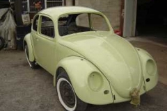 67_beetle_04