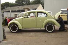 67_beetle_05