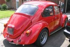 beetle_04_01